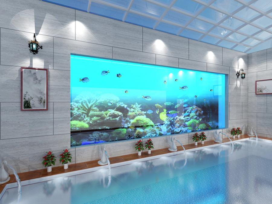 游泳池+魚缸
