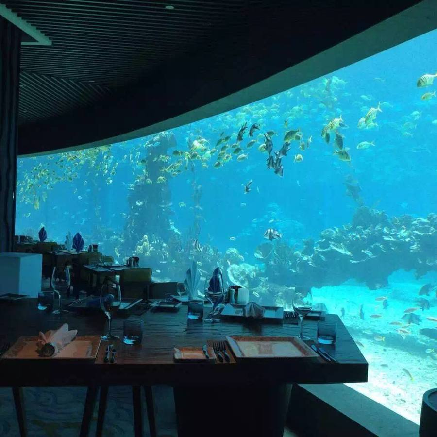 海洋馆主题餐厅.jpg