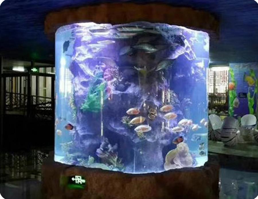 Large-acrylic-aquarium-customized.jpg