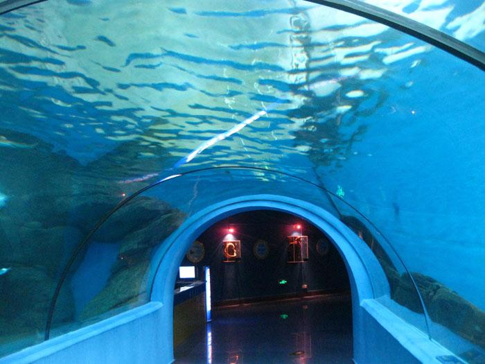 海洋馆隧道