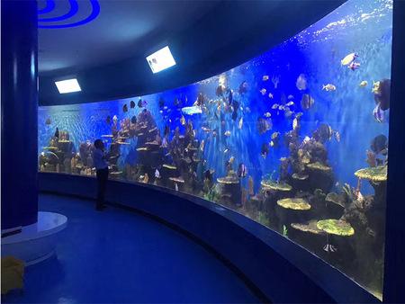 海洋馆亚克力观赏水族箱